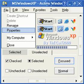 MSWindowsXP