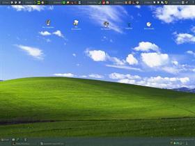 Mantis.- Desktop1