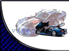ViperGTS