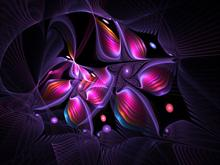 Apophysis Polymorphism by Gibson125