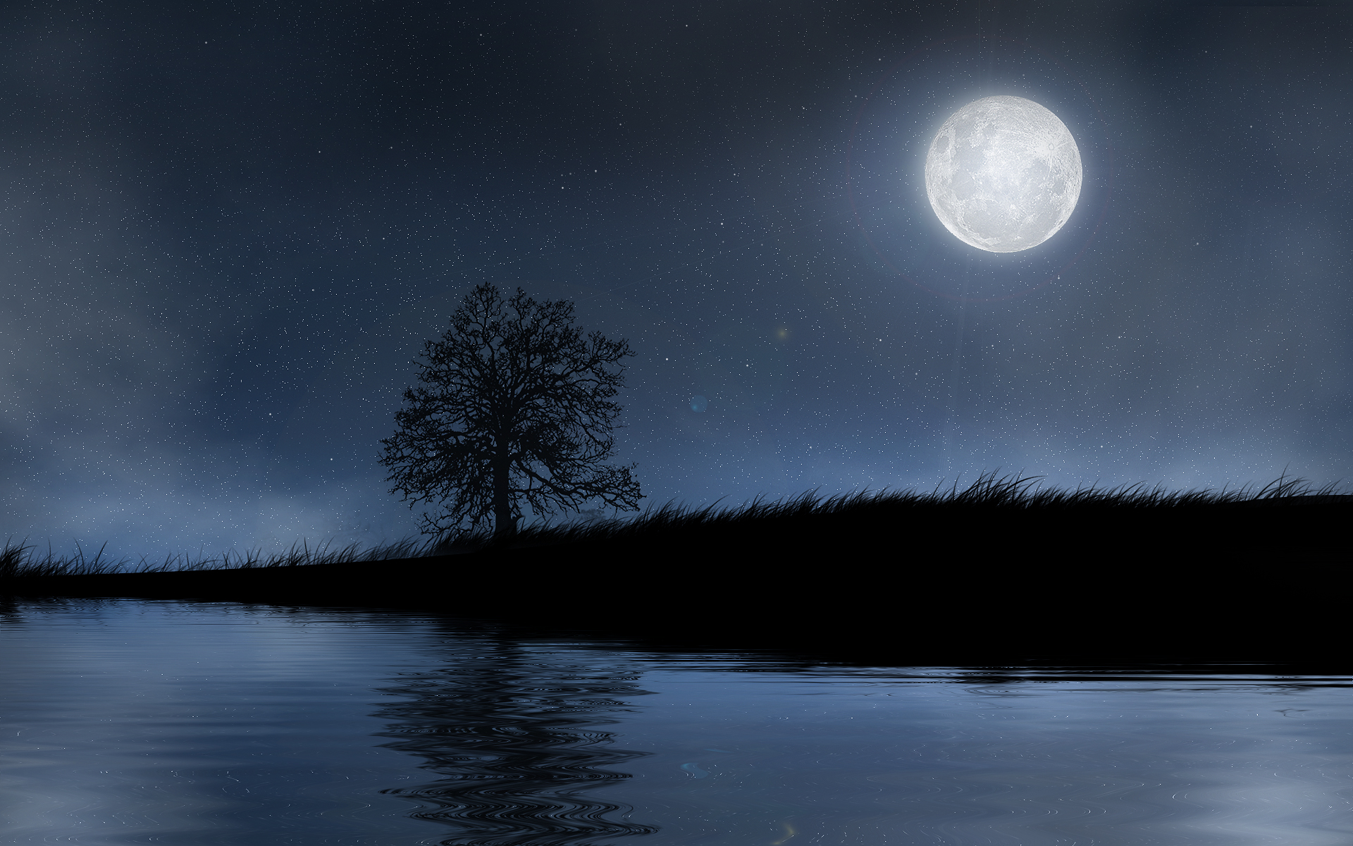 Nocturne~moon