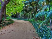 Hidden Path II