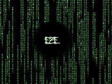 EZE matrix