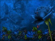 BlueBloodware