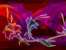 Lilies Wild