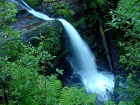 Middle Liffey Falls