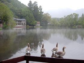 Ginrin-lake