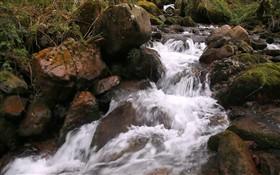 The Cascade