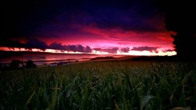 Twilight Grassfield