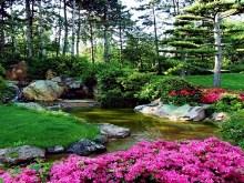 Spring Garden Stream