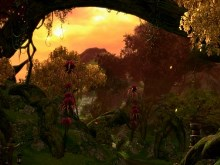 Tera Autumn