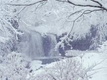 4K Snow Falls 2