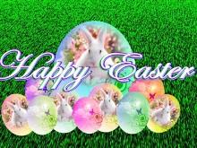 Easter Bunny Eggs Logon