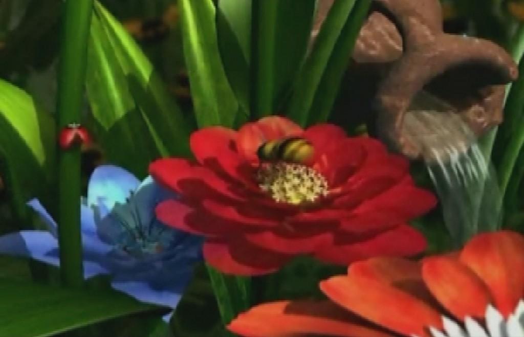 my flower garden