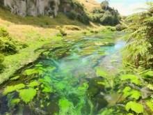 flossy moss stream