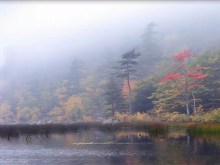 Foggy Autumn Lake