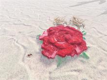 Hornytoad love at Rose Rock