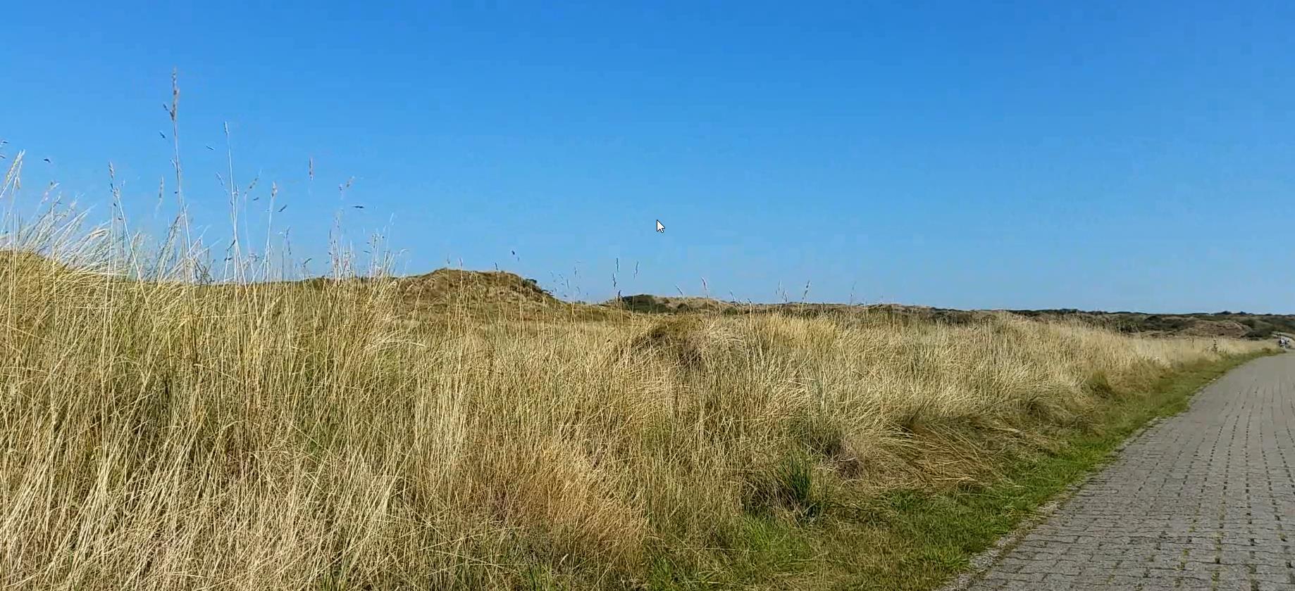 Dunes of Langeoog