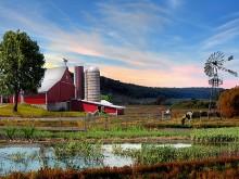 Down On The Farm #Summer 10
