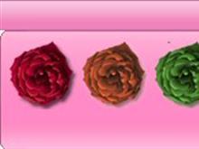 Roses Dock Pngs