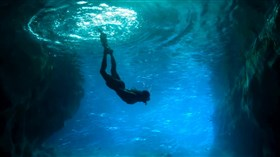 Beautiful_Diver