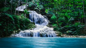 Jungle_River_Falls