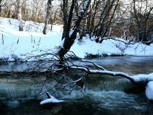 Snowy_Winter_Creek