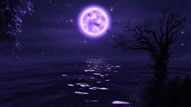 Purple Night