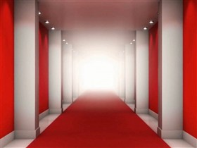 the red carpet hallway